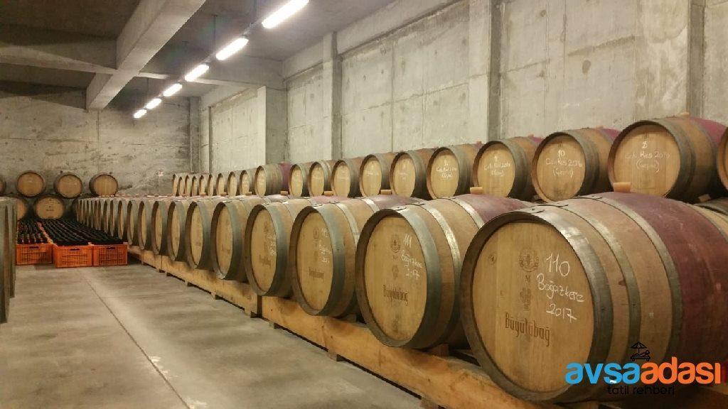 Avşa Adası Şarap fabrikası